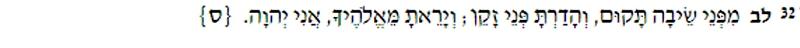 Lev 19:32