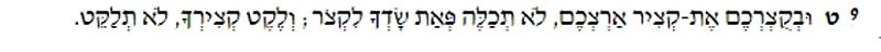 Lev 19:9